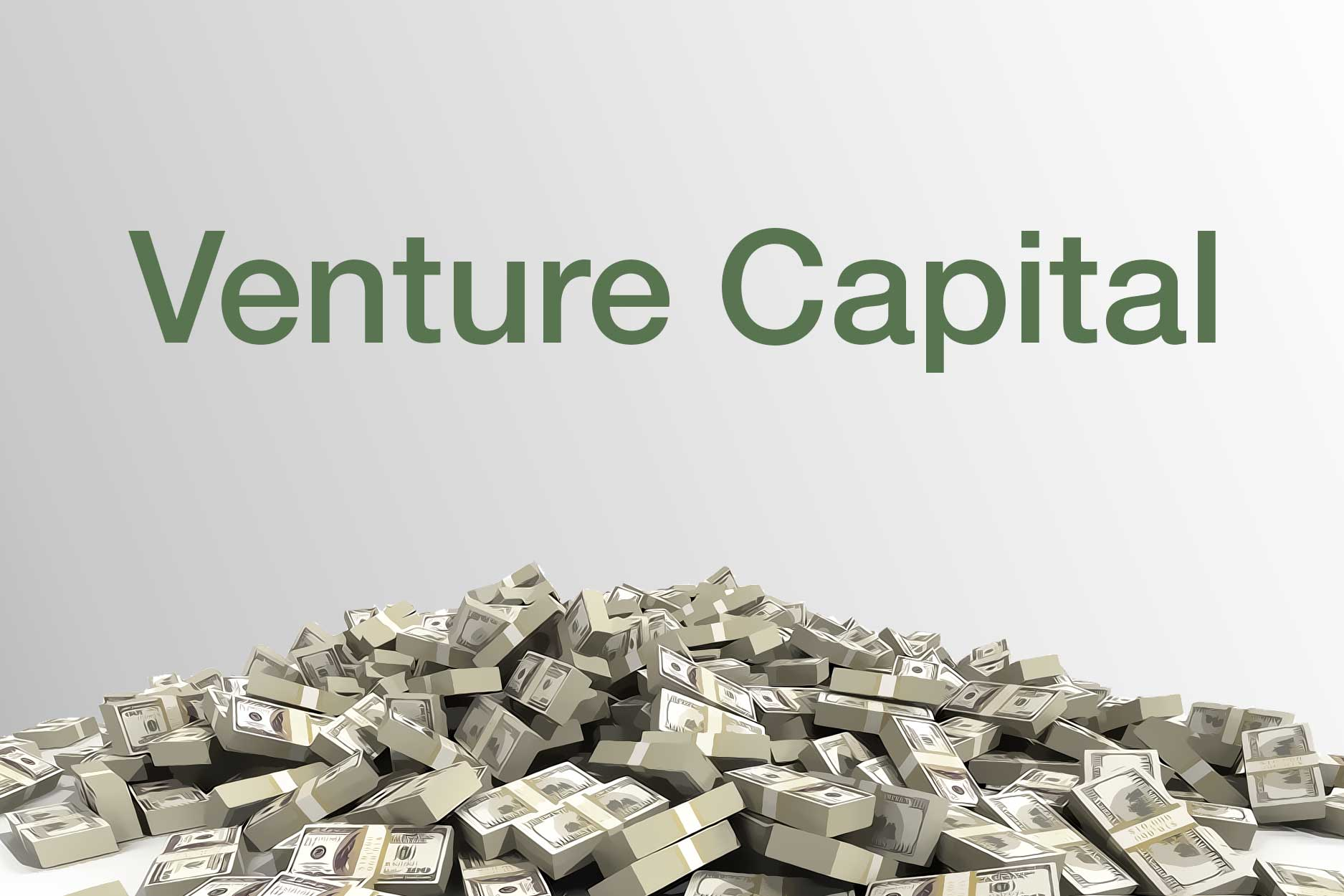 Here's What We Know About VC Investments | Founder's Guide