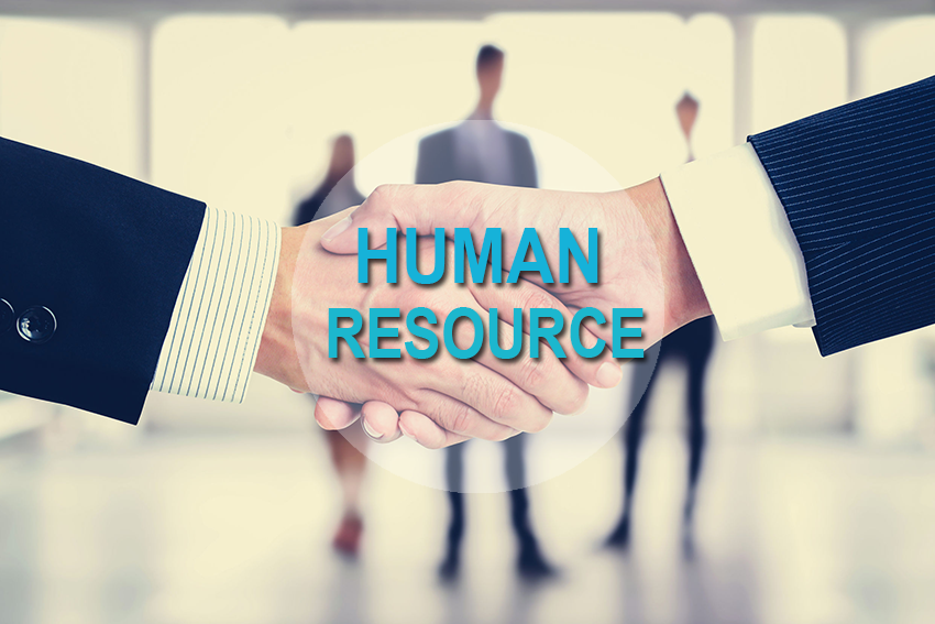 Protect And Prepare: Things To Consider Before Hiring Staff