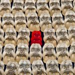 Business Unusual: Making Your Company Stand Out From the Crowd