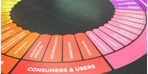 consumers and users