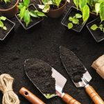 NAPC Bats for Composting to Sustain Urban Gardening