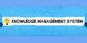 What Are The Two Major Types Of Knowledge Management Systems?