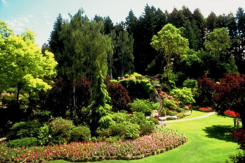Starting a Landscaping Business? You'll Need More Than Talent!