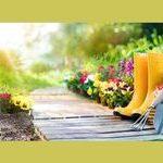 Safety Measures Every Gardener Needs To Practice